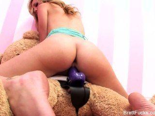 Brett rossi fickt einen Teddybären