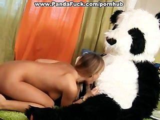 Sex-Spielzeug-Party mit einem geilen Pandabär