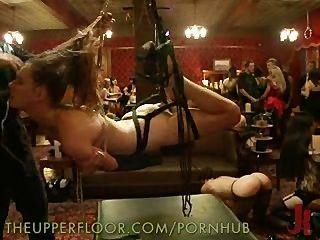 in Knechtschaft suspendiert