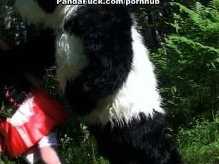 Rotkäppchen fucking mit Panda im Wald