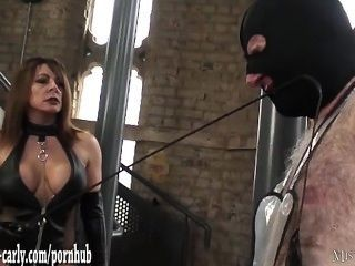 wachs auf penis erotik der frau