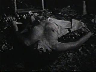 Softcore Nudes 590 1970 - Szene 2