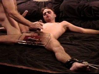 i zerquetschen eine junge Super Gecken große Bälle in einen Schraubstock als Jack hängte ihn ab.