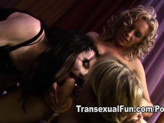 weiblich fickt zwei Transen mit einem Strapon