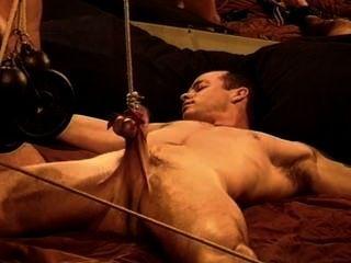 Muskel cbt, bash seine Bälle schlug seinen Schwanz