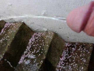 im Treppenhaus gepisst