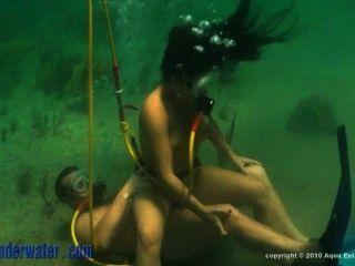 unter Wasser. ocean.hoses