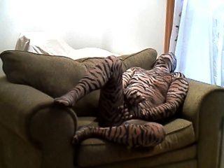 geilen harten Tiger wichst, während in einem großen Stuhl liegend