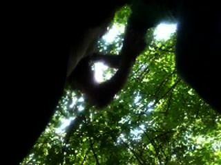 Amateur Kerl saugt College Geck im Park Wald aus