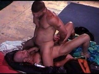 cbt israeli Muskel Gestüt extreme Ball mit seinem älteren Muskel Knospe Stanzen.