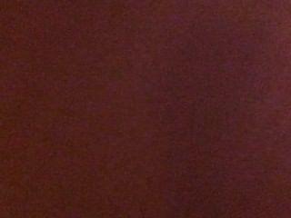 Latina Babe zeigt ihre Muschi Hündchenart