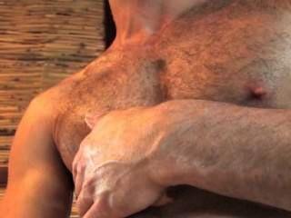 haarigen muskulösen Gestüt silas Zaros