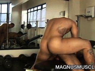 Douglasie Meister und matheus axell: latino Muskelstärkungszauber ass Süchtigen