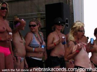 echte Radfahrerküken in Iowa echte wilde gehen