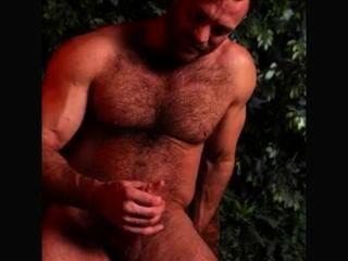 aaron ist ein heißes britisches Bär