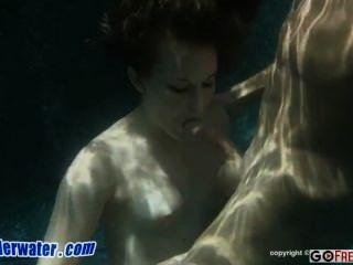 Sex unter Wasser charlie Einzelgänger Neuling