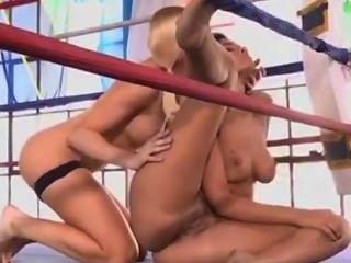 Leitfaden zu Sex-Stellungen