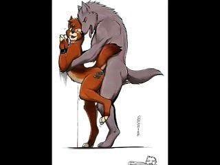 Homosexuell Furry - Wolf