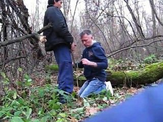 Kreuzfahrt in den Wald ... saugen !!