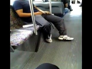 geil in den Bus (eine Fliege zu fangen?)