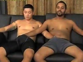 Koren & schwarz saugen sich gegenseitig ab