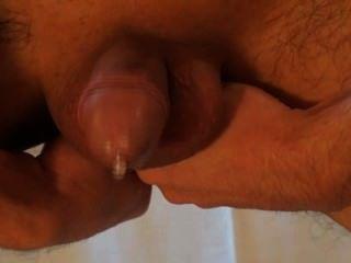 Prostata Melken